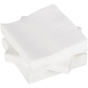 Papirne salvete 2 sl 24×24 cm 250 l/pak bijele TaMbien